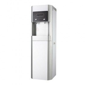 Hot and cooler water dispenser with filter